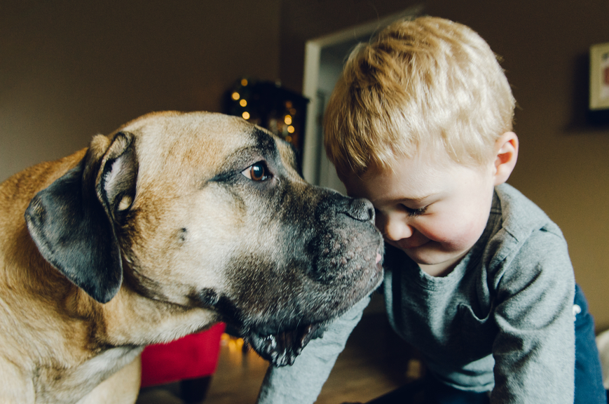 Kids and Pet Safety