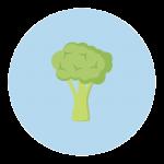 broccoli baby size