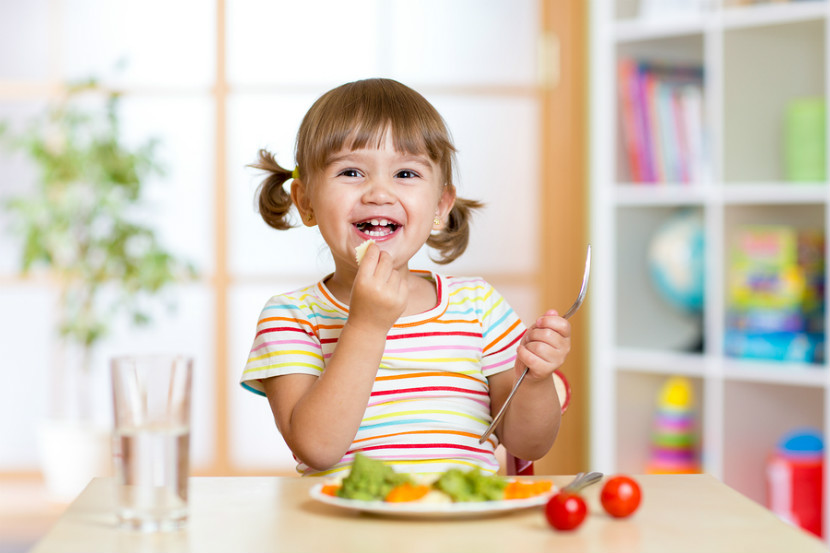 high protein foods for toddlers, pediatrician